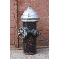 Fire Hydrant (real)